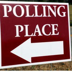 Election 2016 Noshing